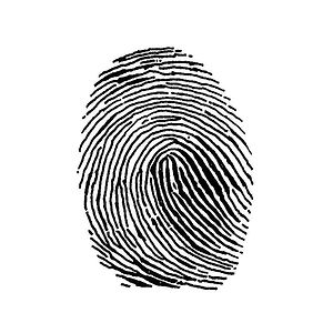 Profile picture for Fingerprint Film