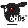 Magnum Opus Projects