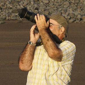 Profile picture for walo thoenen