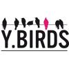 Y Birds