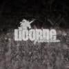 Licorne prod