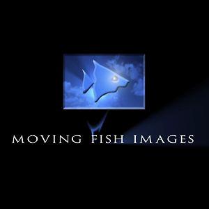 Profile picture for Movingfish