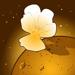 Fleur de mars production