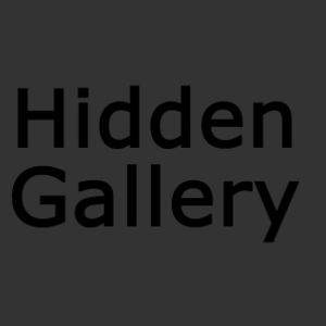 Profile picture for Hidden Gallery