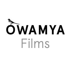 Profile picture for Owamya films