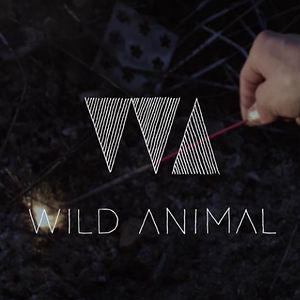 Profile picture for WILD ANIMAL