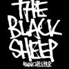 blacksheepstore