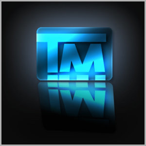 Profile picture for Twin Motion