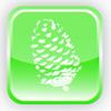 Forest Greene