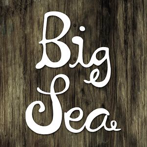 Profile picture for Big Sea