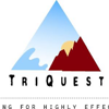 TriQuest empowered by DQM