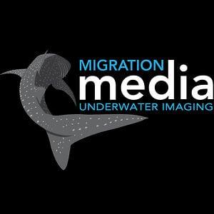 Profile picture for Migration Media