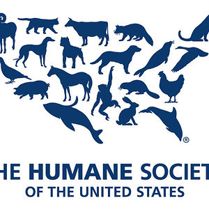Profile picture for The Humane Society of the US
