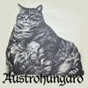 Austrohúngaro