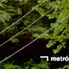 Metrópolis TVE