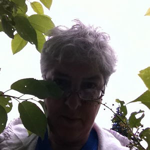 Profile picture for Marjorie Beaucage RainbowWarrior