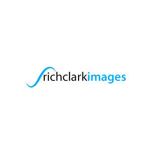 Profile picture for Rich Clark images