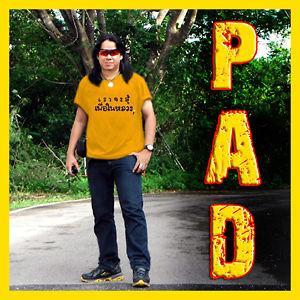 Profile picture for Profrank Guard Pad Chumphon