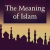 The Meaning of Islam