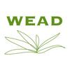 WEAD Artists