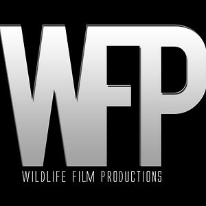 Profile picture for Wildlife Film Productions