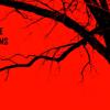 Dead Tree Films