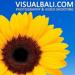 Visual Bali