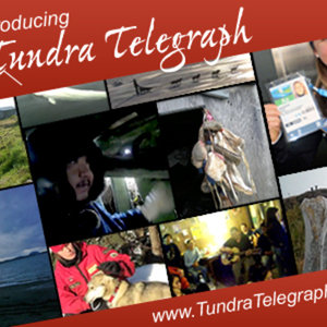 Profile picture for Tundra Telegraph