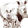 Majestic Rhinos LLC