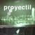 proyectil