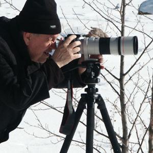 Profile picture for Mikko Y Koponen