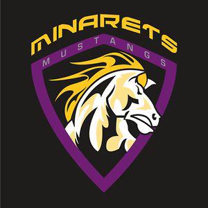 Profile picture for Minarets Media