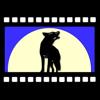 DingoDogFilms