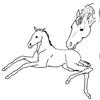 Equine Neonatal Manual