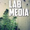 LABmedia