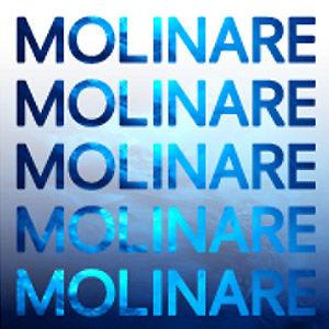 Profile picture for Molinare