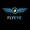 fly-eye