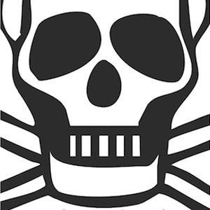Profile picture for Studio Pirate
