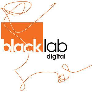 Profile picture for Blacklab Digital