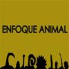 Enfoque Animal