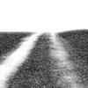 Free Road Films