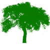 Tree Petts Casting
