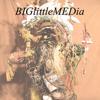 BIGlittleMEDia