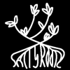 saltyrootz