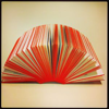 Book as Art