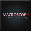 Macroscope Pictures