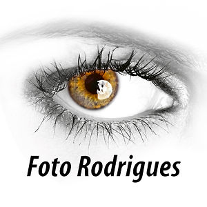 Profile picture for Foto Rodrigues  ESPINHO