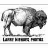 larry niehues