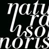Natura Sonoris