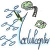 ModulCopter